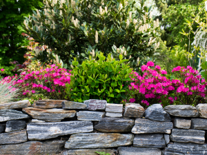 Why Use Crushed Stone for Landscape Projects?