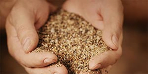 Waldorf Maryland Sand & Gravel Delivery Services